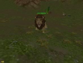 巨型火爆鬃狮长