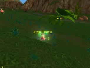 光种球王孵化体