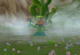 秘境铁齿花
