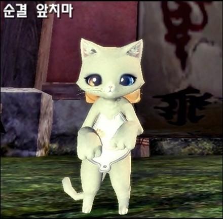 小猫衣服简单步骤图