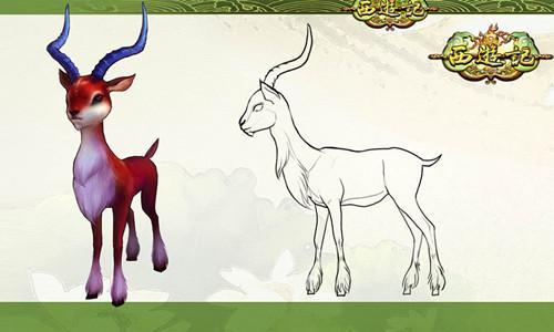 羊关节结构示意图