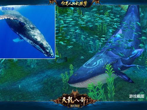 深渊魅影!《天龙八部》海洋生物大百科