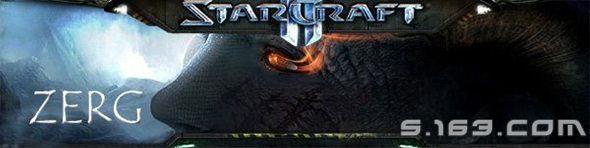 Zerg_Banner_S.163.COM