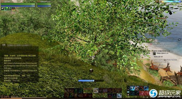 碎石平原砍伐树木