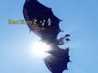 上古世纪韩服新手教程 宠物与飞行器
