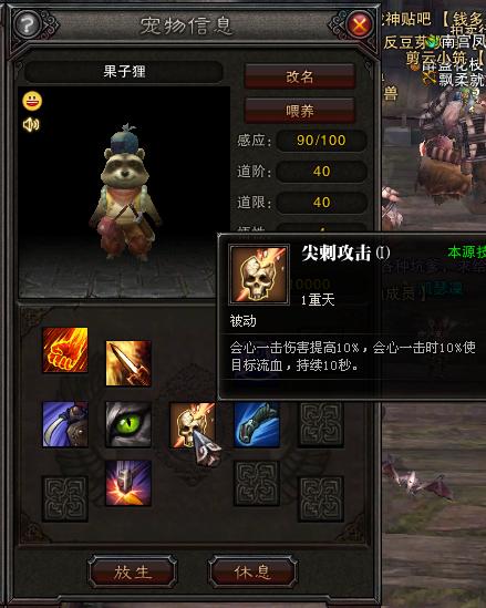 斗战神装备粹�9��a�_玉狐装备宠物经文指导 斗战神高手进阶攻略