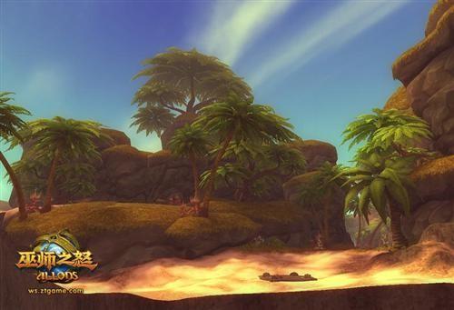 阳光的热带雨林