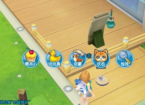 游戏星城宠物养成全方位攻略
