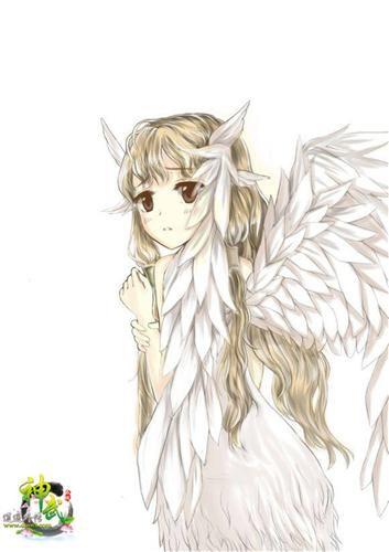 翅膀手绘图彩色