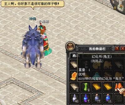 QQ自由幻想 打造完美宠物玩法